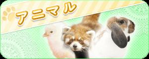 新着動物画像